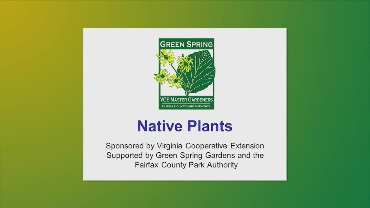 Green Festival 2019 Native Plants by Dr. Joan Maloof